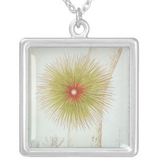A Bromelia found in the Andes Silver Plated Necklace