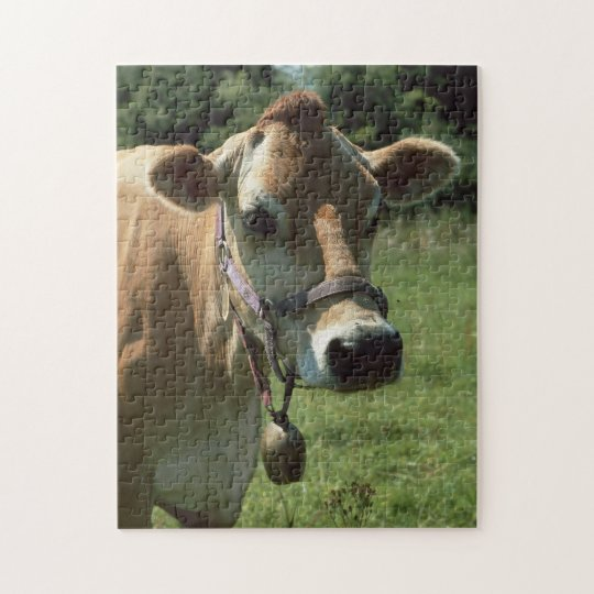 A Brown Jersey Cow In Summer Meadow jigsaw