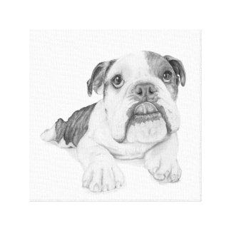 A Bulldog Puppy Drawing Canvas Print