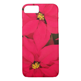 A bunch of Brightly Colored Christmas Poinsettias iPhone 7 Case