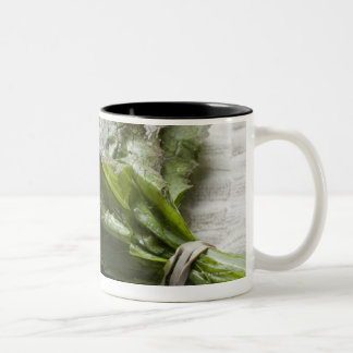 A bunch of fresh mustard greens, from a farmer's Two-Tone coffee mug