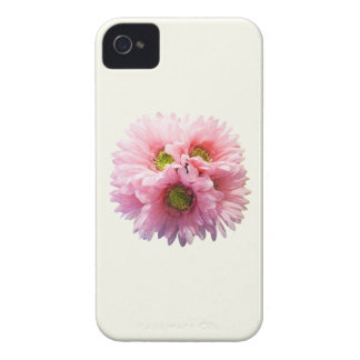 A Bunch of Pink Daisies iPhone 4 Cases