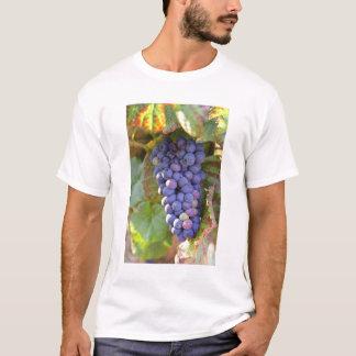 A bunch of Pinot Noir grapes in a Chambertin T-Shirt
