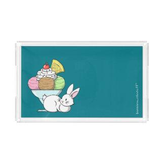 A bunny and an ice cream acrylic tray