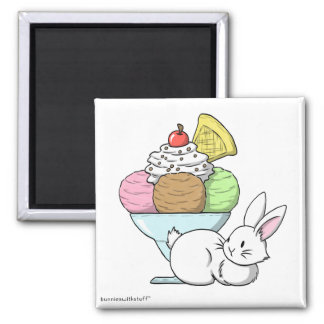 A bunny and an ice cream magnet