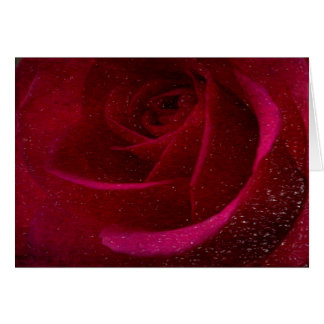 A Burgundy Rose in Snow Greeting Card