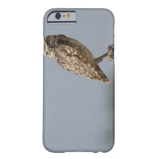 A burrowing owl sitting on a fence post. Taken Barely There iPhone 6 Case