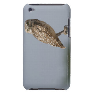 A burrowing owl sitting on a fence post. Taken Barely There iPod Case