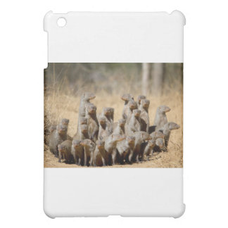 A Business of Mongoose iPad Mini Cases