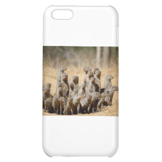 A Business of Mongoose Cover For iPhone 5C