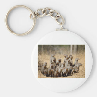 A Business of Mongoose Basic Round Button Key Ring
