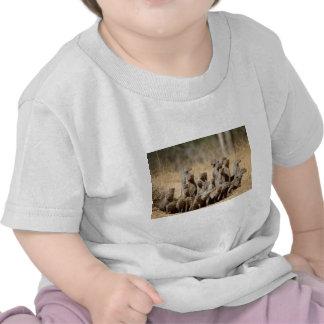A Business of Mongoose Shirt