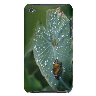 A Butterfly on a leaf with water droplets iPod Touch Covers