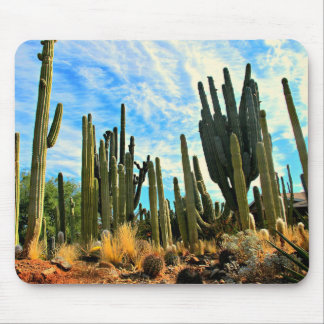 A Cacti Mouse Pad