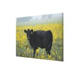 A calf amid the sunflowers of the Nebraska Gallery Wrap Canvas