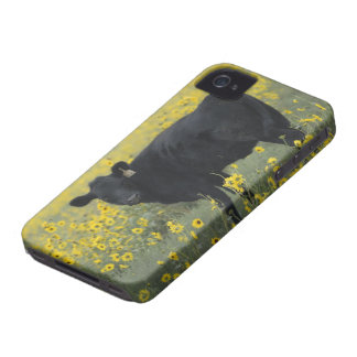 A calf amid the sunflowers of the Nebraska iPhone 4 Case-Mate Cases