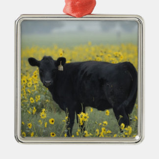 A calf amid the sunflowers of the Nebraska Silver-Colored Square Decoration