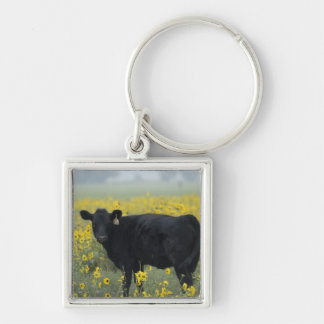 A calf amid the sunflowers of the Nebraska Silver-Colored Square Key Ring