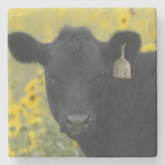 A calf amid the sunflowers of the Nebraska Stone Beverage Coaster