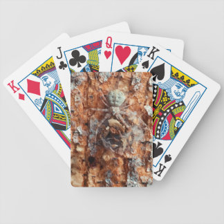 A Camouflaged Bark Spider Bicycle Playing Cards