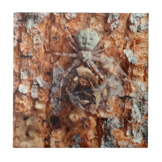 A Camouflaged Bark Spider Tile