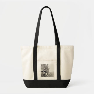 A Cannonade on the Matterhorn, 1862, from 'The Asc Tote Bag