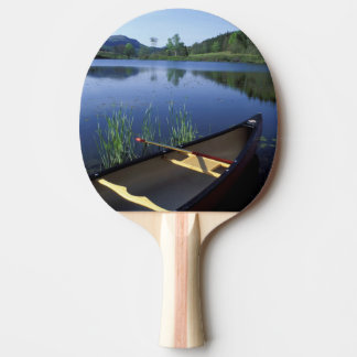 A canoe rests on the shore of Little Long Pond Ping Pong Paddle