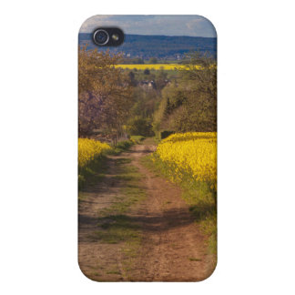 A canola field in spring iPhone 4 cases