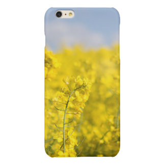 A canola field in spring iPhone 6 plus case