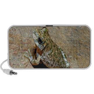 A Canyon Treefrog Laptop Speaker