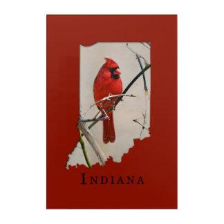 A Cardinal Inside the Shape of Indiana Acrylic Print