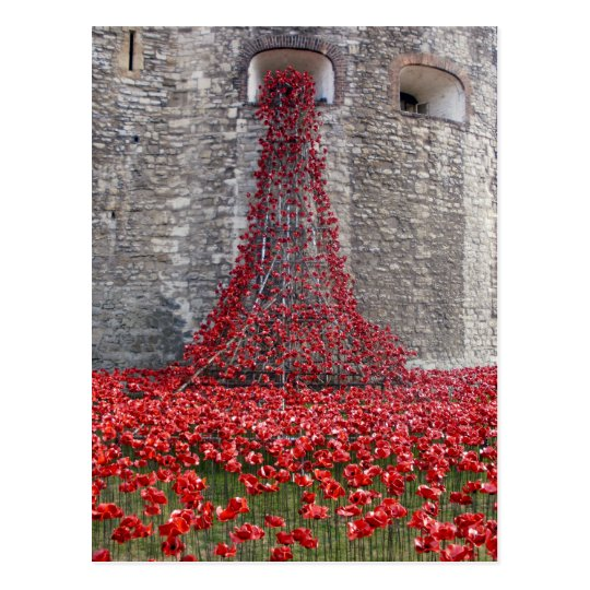 A Cascade Of Poppies At The Tower Of