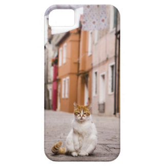 A cat in the streets of Burano, Italy.  2006. Case For The iPhone 5