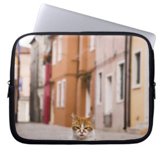 A cat in the streets of Burano, Italy.  2006. Laptop Sleeve
