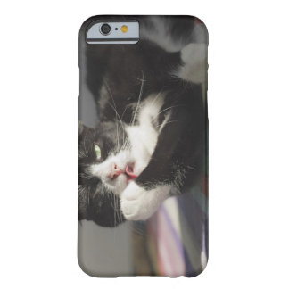A Cat Licking It's Paw Barely There iPhone 6 Case