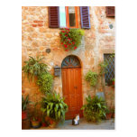 A cat seeks entrance to home in Pienza, Italy. Post Cards