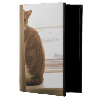 A Cat Sitting Behind The Curtains On A Window iPad Air Case