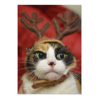 A cat wearing reindeer antlers card