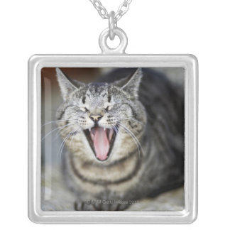 A cat yawning, Sweden. Silver Plated Necklace