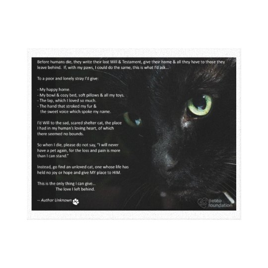 a cats dying wish canvas