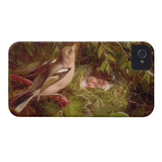 A Chaffinch at its Nest, 1877 (oil on panel) iPhone 4 Cases