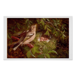A Chaffinch at its Nest, 1877 (oil on panel) Poster