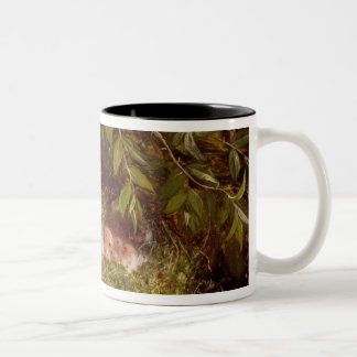 A Chaffinch at its Nest, 1877 (oil on panel) Two-Tone Coffee Mug