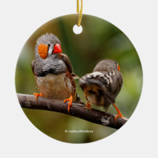 A Cheeky Pair of Zebra Finches Christmas Ornament