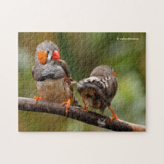A Cheeky Pair of Zebra Finches Jigsaw Puzzle