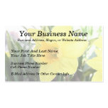 A Cheerful Yellow Daffodil Double-Sided Standard Business Cards (Pack Of 100)