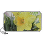 A Cheerful Yellow Daffodil Travelling Speaker