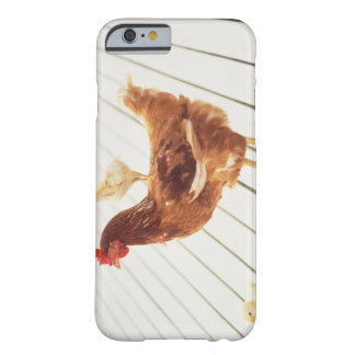 A Chicken and Two Chicks On a Wooden Floor, Barely There iPhone 6 Case