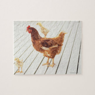 A Chicken and Two Chicks On a Wooden Floor, Jigsaw Puzzle