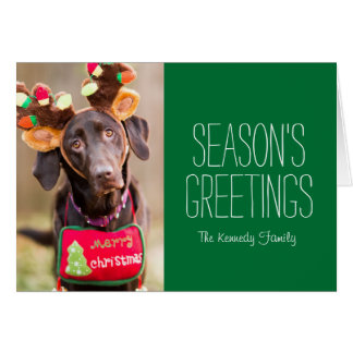 A Chocolate Labrador Retriever dog Card